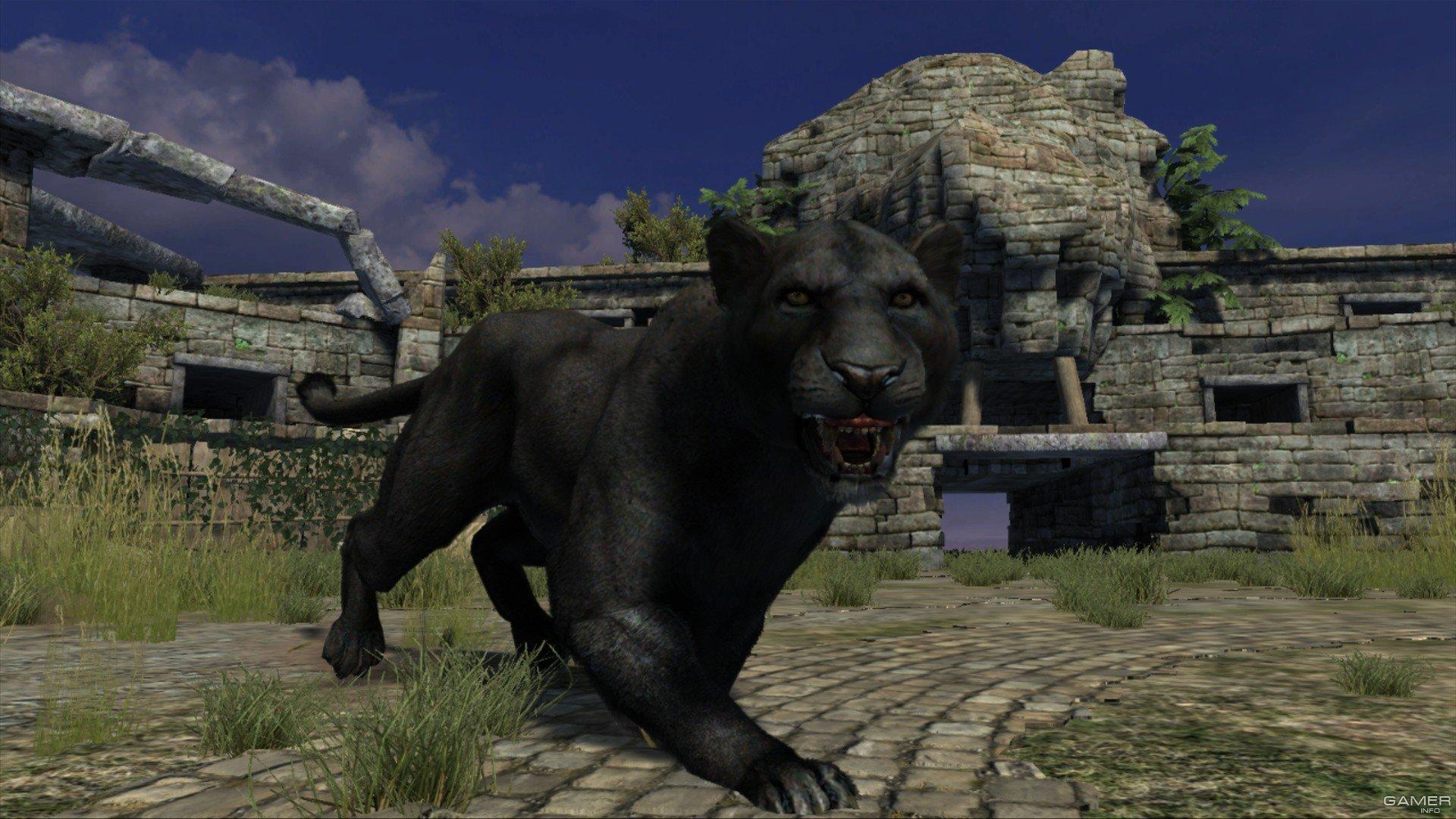 Cabela s Dangerous Hunts - Xbox Video Games