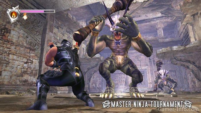 Ninja Gaiden 2004 Video Game